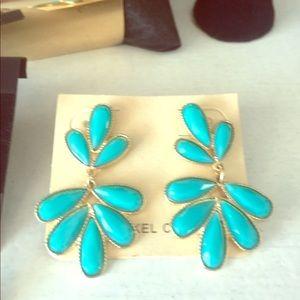 Jewelry - Beautiful turquoise earrings
